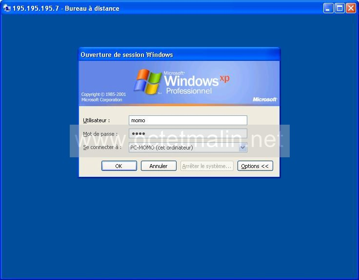 windows xp bureau distance connexion